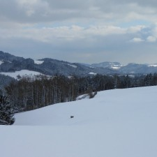 Blickrichtung Speckalm - Donautal - 21.02.2013
