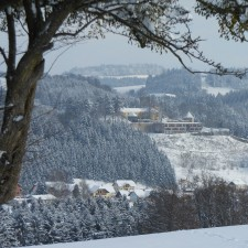 Schatz.Kammer - Burg Kreuzen im Winter - 19.01.2013