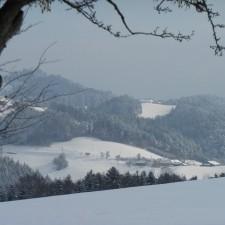 Speck - Alm im Schnee - 19.01.2013