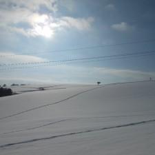 Schneespuren Richtung Würzenbergerdorf - 19.01.2013